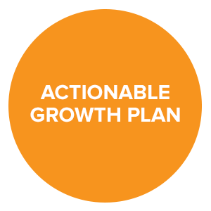 Mintoa - Actionable Growth Plan